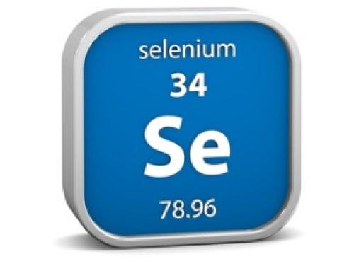 Автоматизация мобильных и веб-приложений с Selenium