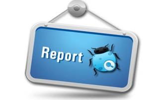 defect-bag-report
