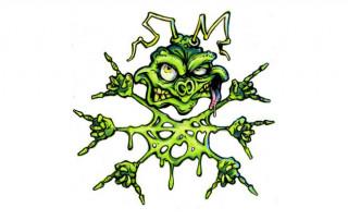 paskuda-zielona-2